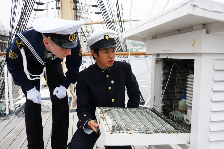 Японские и российские курсанты побывали в гостях на парусниках