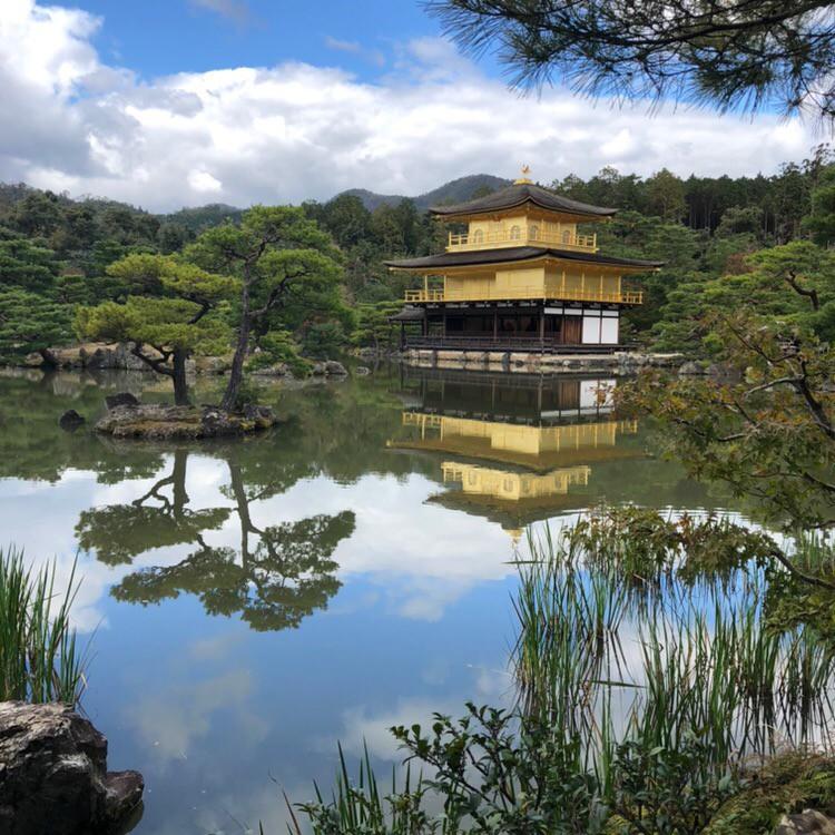 Лицеисты побывали в Японии