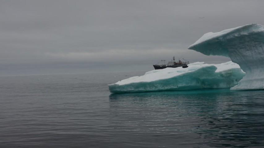 Растим молодую смену для работы в Арктике